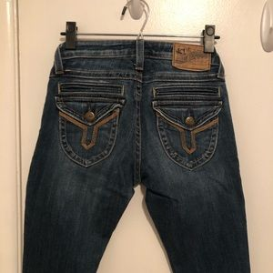 Vigoss Studio The Seattle Skinny Jeans